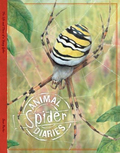 Spider (Animal Diaries) ebook