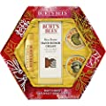 Burt's Bees Essential Everyday Beauty Gift Set, 5 Travel Size Products