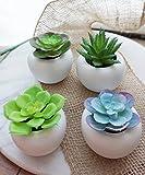 Small Faux Succulent Plant Potted, Set of 4 Succulent Planter Set, Artificial Plant Mini Cactus Minimalist Rounded Egg Pots