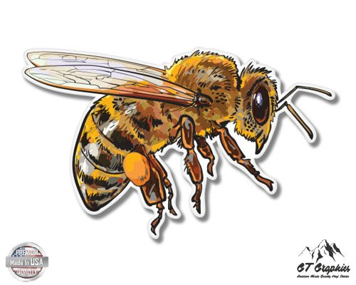 (Honey Bee - 3