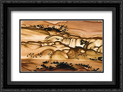 (Oregon Close-up of Biggs Picture Jasper Stone 18x13 Black Ornate Frame and Double Matted Art Print by Kirkland, Dennis)