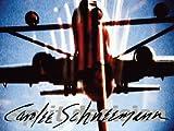 img - for Carolee Schneemann: Split Decision book / textbook / text book
