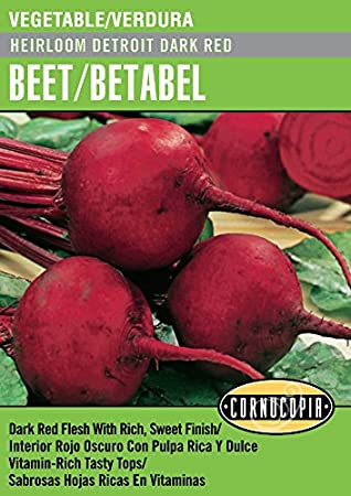 Amazon.com : Heirloom Detroit Dark Red Beet/Betabel - Spanish/English : Garden & Outdoor