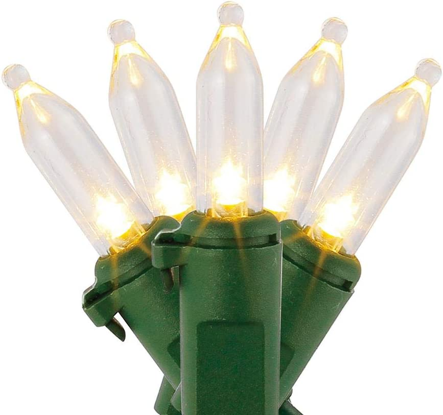 Home Accents Holiday 29.5 ft. 100-Light LED Mini Warm White String Light with Green Wire
