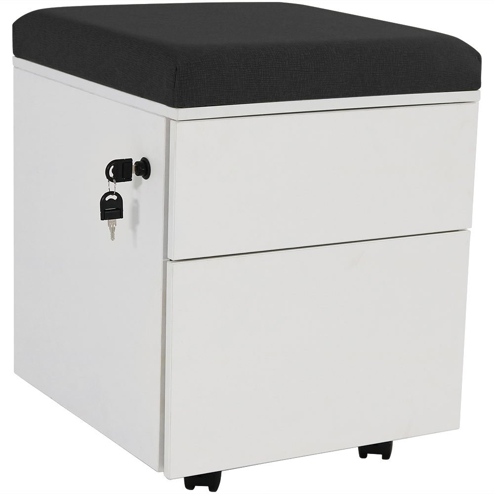 CASL Brands Rolling Steel 2-Drawer Mobile Pedestal Storage Cabinet with Lock and Black Cushion for Home or Office