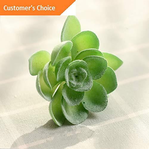 Hebel Artificial Succulent Plant Grass Desert Plant Landscape Fake Flower Garden US | Model ARTFCL - 740 -