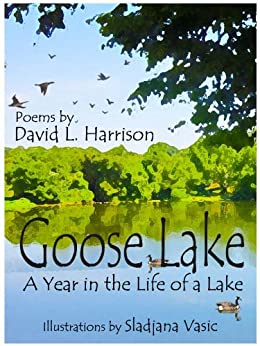 Goose Lake, A Year in the Life of a Lake by [Harrison, David L.]