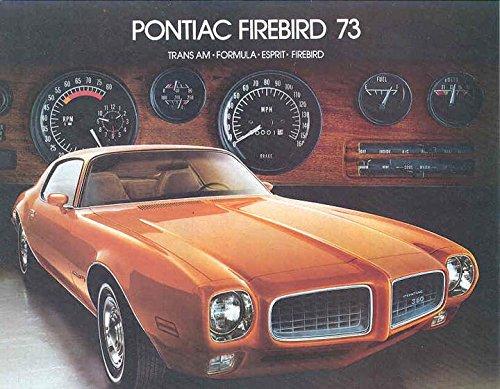 1973-pontiac-firebird-trans-am-formula-espirit-brochure-canada