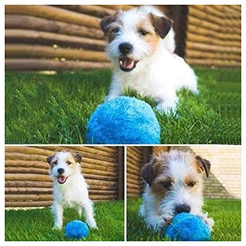 Roller Magic - Magic Roller Ball Toy Automatic Roller Ball Magic Ball Dog Cat Pet Toy (1 Rolling Ball + 4 Color Ball Cover)