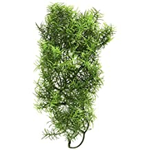 Zoo Med Laboratories SZMBU28 Natural Bushy Casuarina, Medium
