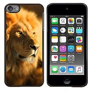 Jordan Colourful Shop - Lion Africa Savannah Jungle Leader Pack For Apple iPod Touch 6 6th Generation Personalizado negro cubierta de la caja de pl????stico
