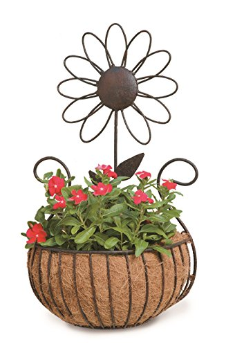 Deer Park WB135 Daisy Wall Basket with Cocoa Moss (Patina Moss Finish)