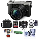 Panasonic Lumix DC-GX9 20.3MP Mirrorless Camera with 12-60mm F3.5-5.6 Lens, Silver - Bundle with Camera Bag, 32GB SDHC U3 Card, Cleaning Kit, Card Reader, 58mm Filter Kit, Mac Software Pack and More