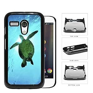 Beautiful Green Sea Turtle Swimming in Bright Blue Ocean Water Hard Snap on Phone Case Cover Motorola Moto G
