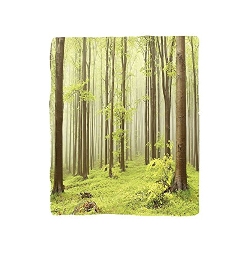 VROSELV Custom Blanket Woodland Misty Spring Beech Forest in the Mountains of Central Europe Wilderness Nature Picture Soft Fleece Throw Blanket Green Beige