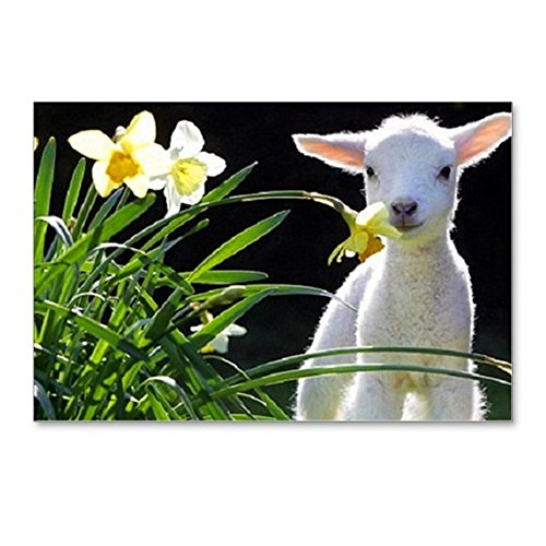 Easter Postcard Photo (CafePress - LAMB AND FLOWERS - Postcards (Package of 8), 6