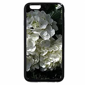 iPhone 6S / iPhone 6 Case (Black) A Flower cannot blossom without Sunshine 15