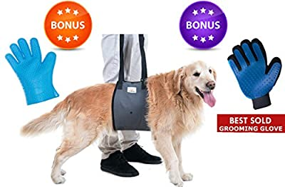 Veterinarian Approved Canine Dog Support Harness + Hair Remover Glove + Bathing Glove - Dogs Sling Lift for Paralyzed Legs - Mobility Rehabilitation for Injured Arthritis Elderly Disabled - All sizes
