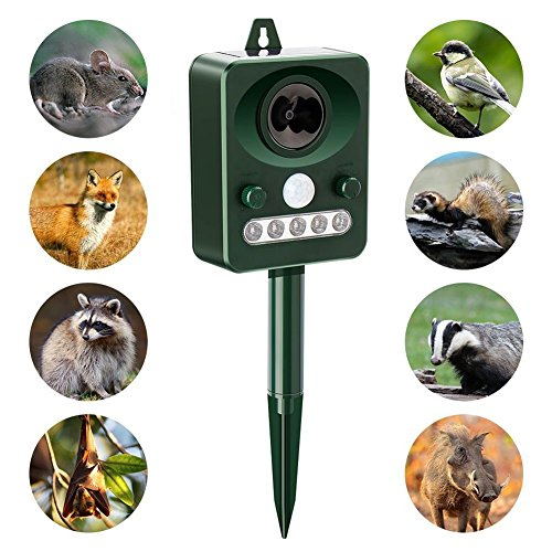 Yayoshow Solar Ultrasonic Animal Repellent,Bird Repeller,Outdoor Solar Powered Pest Repeller for Bird, Cats, Dogs, Squirrels, Moles, Rats by Yayoshow