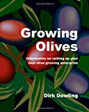 Growing Olives: Information On Setting Up Your Own Olive Growing Enterprise