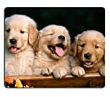 Golden Retriever dogs puppies pets Mouse Pads Customized Made to Order Support Ready 9 7/8 Inch (250mm) X 7 7/8 Inch (200mm) X 1/16 Inch (2mm) High Quality Eco Friendly Cloth with Neoprene Rubber Liil Mouse Pad Desktop Mousepad Laptop Mousepads Comfortable Computer Mouse Mat Cute Gaming Mouse pad