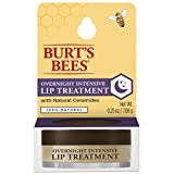 Best Lip Balms And Treatments - Burt's Bees 100% Natural Overnight Intensive Lip Treatment Review