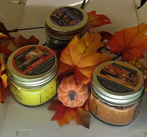 sellerstationtop Fall Set of 3 Thanksgiving Pillar Autumn Scented Candles with with 4 Maple Pumpkin Leaf Stems -