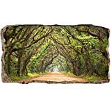 Startonight 3D Mural Wall Art Photo Decor Window Green Tunnel Tree Amazing Dual View Surprise Large Wall Mural Wallpaper for Living Room or Bedroom Nature 120 x 220 cm
