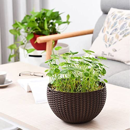 MElnN, Hängeampel / Pflanzenampel / Blumentopf zum Aufhängen, mit Einsatz und Wassertrennplatte, rund, aus Kunstharz, Rattan-Optik, für drinnen und draußen, coffee, Free Size