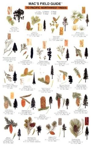 Mac's Field Guide To Pacific Northwest Trees (Mac's Guides) (Mac's Guides (Flash Cards))