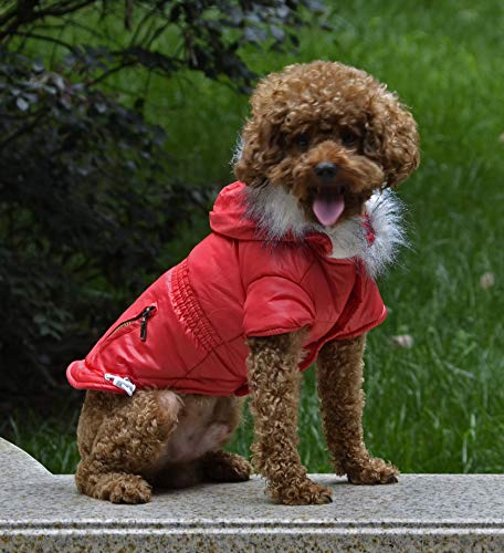 fogohill Small Medium Dog&Cat Winter Pet Cat Dog Soft Padded Coat Hooded Jacket Warm Windproof Costumes Jacket Red M(Tag:L)