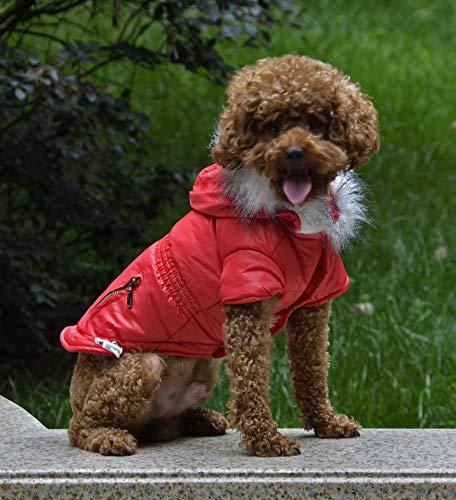 fogohill Small Medium Dog&Cat Winter Pet Cat Dog Soft Padded Coat Hooded Jacket Warm Windproof Costumes Jacket Red M(Tag:L) ()