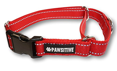 (Pawsitive Pet Reflective Nylon Martingale Collar Premium Nylon Adjustable Training Collar for Dogs We Donate a Collar for Every Collar Sold.)