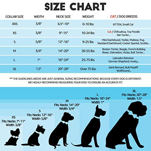 waaag Pet Collars Tropical Pineapple Cat Collar, Safety Breakaway Cat Collar, Large(Standard) Size (9-15 Neck)