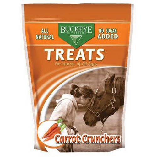51PTOBMRSwL - Buckeye All-Natural Sugar-Free Carrot Crunchers Horse Treats, 4 Pound Bag