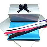 PEPPERLONELY 10'' x 5'' x 4'' Silver Gift Boxes, 10 Count with 10PC Pull Bows and Tissue Paper