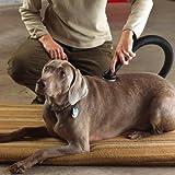 Shop-Vac 9190400 1.1/4-Inch Dog Grooming Tool