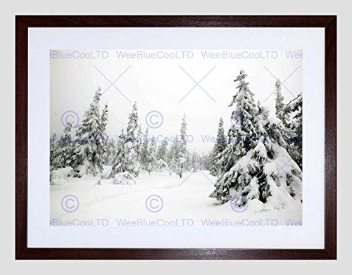 Photo Landscape Winter Scene Snow Forest Trees Black Framed Art Print B12X8131 ()