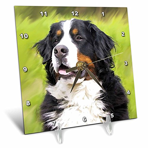 - 3dRose dc_4402_1 Bernese Mountain Dog Desk Clock, 6 by 6-Inch
