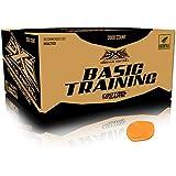 GI Sportz DXS Basic Training Paintballs Case of 2000 Rounds