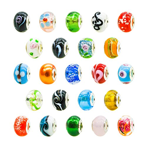 - TOAOB 50pcs Lampwork Beads Assorted Large Hole 14mm for Ladies European Snake Charm
