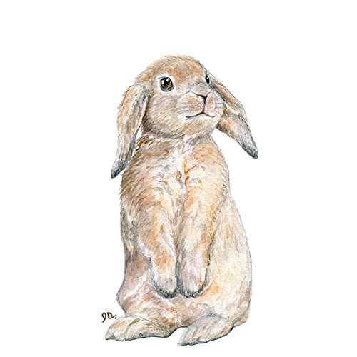 Bunny Nursery Art Print, Baby Bunny Wall Art, Childrens Room Decor, Forest Rabbit Watercolor Woodland Animal - Usps Fees Customs