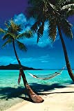 Decorate your home or office with high quality posters. Paradise (Hammock, Beach) Art Poster Print - 24x36 is that perfect piece that matches your style, interests, and budget.