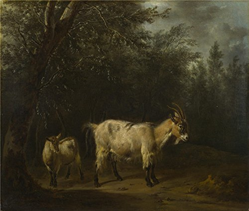 Oil Painting 'Adriaen Van De Velde - A Goat And A Kid,1655-72' 24 x 28 inch / 61 x 72 cm , on High Definition HD canvas prints is for Gifts And Garage, Hallway And Laundry Room Decoration (Ashton Light Fixture)