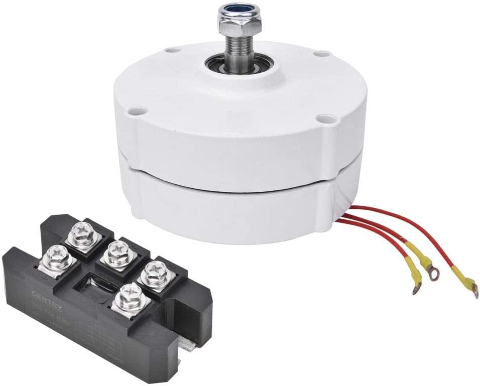 Yanmis Generador de Viento de 12V 100W, alternador síncrono de turbina eólica de Motor de imán Permanente trifásico NE-100(Generador + Rectificador)