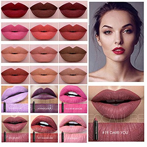 Hot Sales! Fation ShowFOCALLURE Metallic Lipstick Pencil Matte Lip Crayon Lasting Waterproof 27 Color Optional Lip Makeup (19PCS)