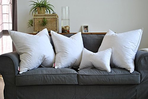 Throw Pillow Inserts 22x22