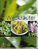 Premium: Wildkräuterküche - Lexikon und Rezepte