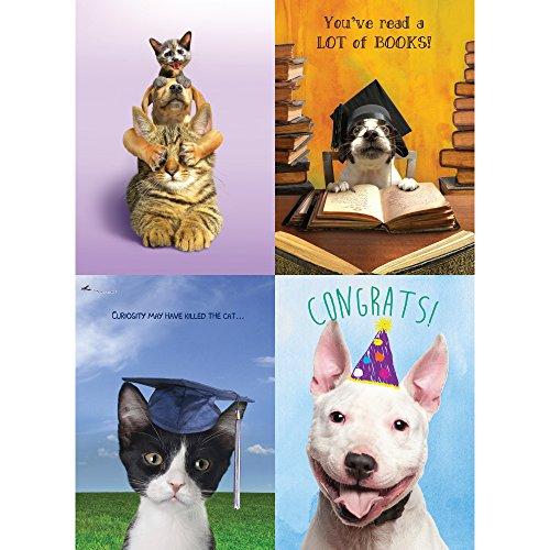 Graduation Assortment (Tree-Free Greetings Animal Congrats Graduation Card Assortment, 5 x 7 Inches, 8 Cards and Envelopes per Set (GA31676))