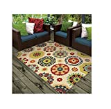 Contemporary Traditional Rectangular Indoor/ Outdoor Rug